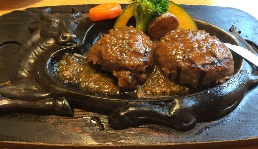 静岡県限定!? 幻のハンバーグ「さわやか」を食べてきた。